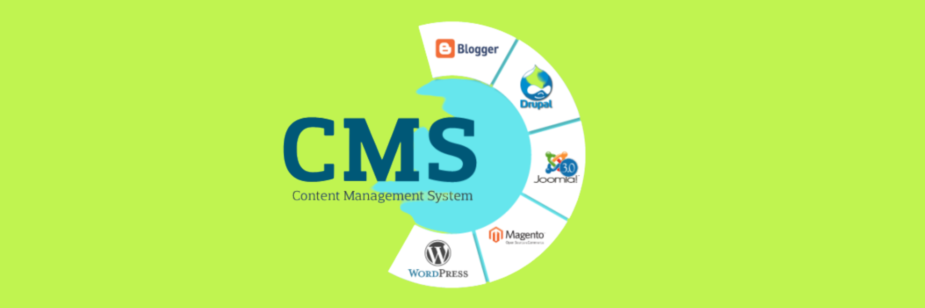 why choose wordpress cms system